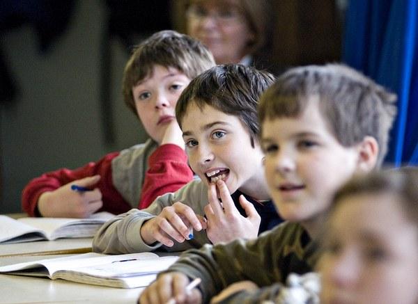 Как составить воспитательную программу школы