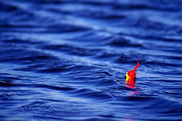 Как выбрать поплавок
