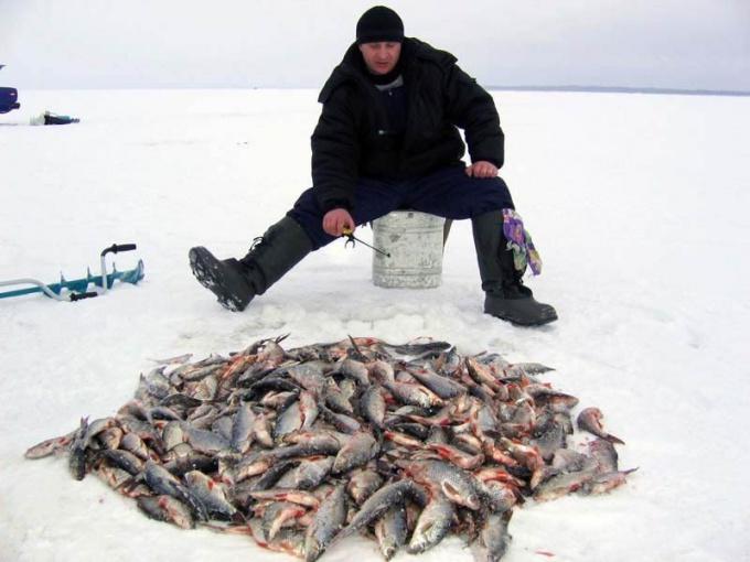 Как проходит зимняя рыбалка