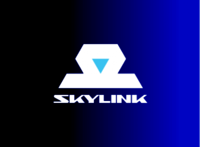 "How to find out balance on the ""Skylink"""