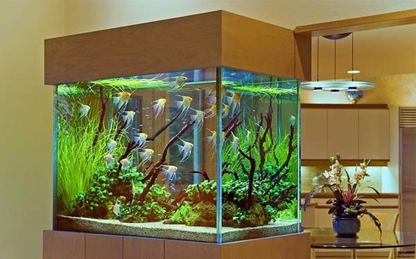 как сделать тумбу под аквариум своими руками