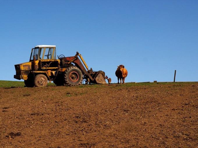 Как открыть крестьянское хозяйство