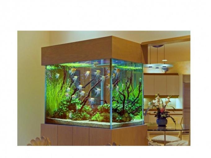 как почистить аквариумный фильтр xp-900