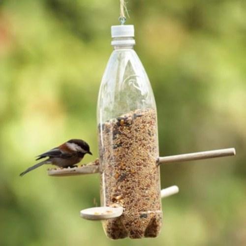 Как сделать кормушки для птиц