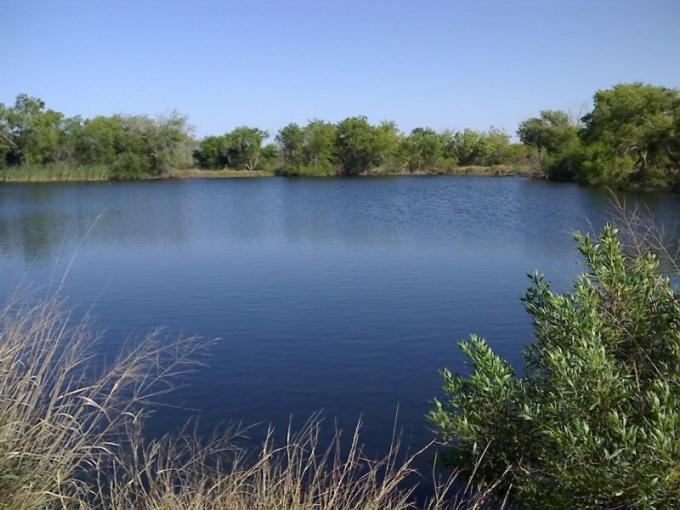Как оформить пруд в собственность