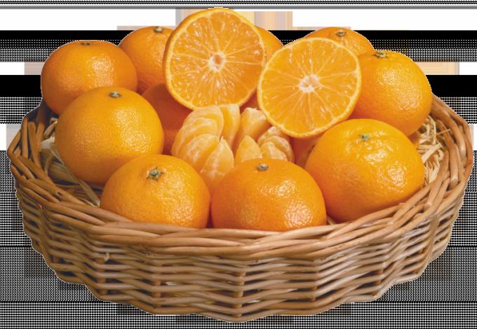Какие свойства мандаринов полезны