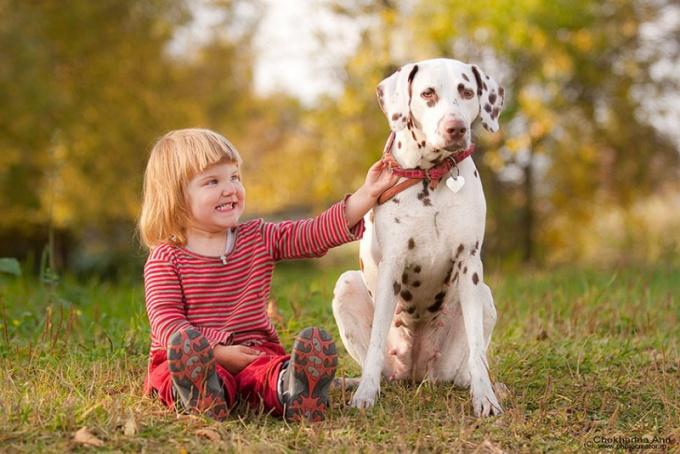 Как выбрать собаку для детей