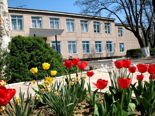 Как украсить школьный двор