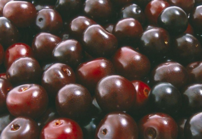 How to freeze cherries