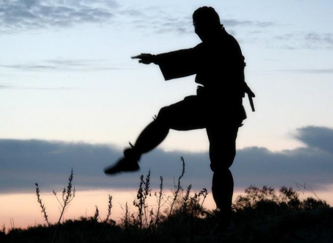 Как научиться искусству ниндзя