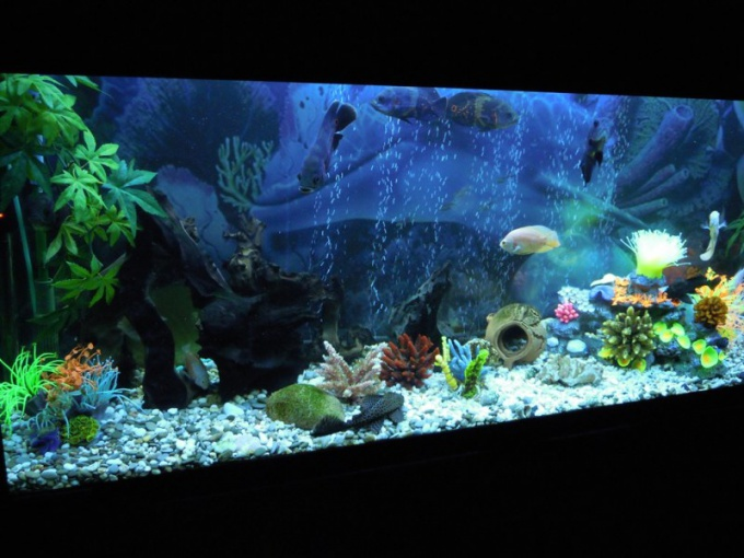 How to stick on the aquarium film