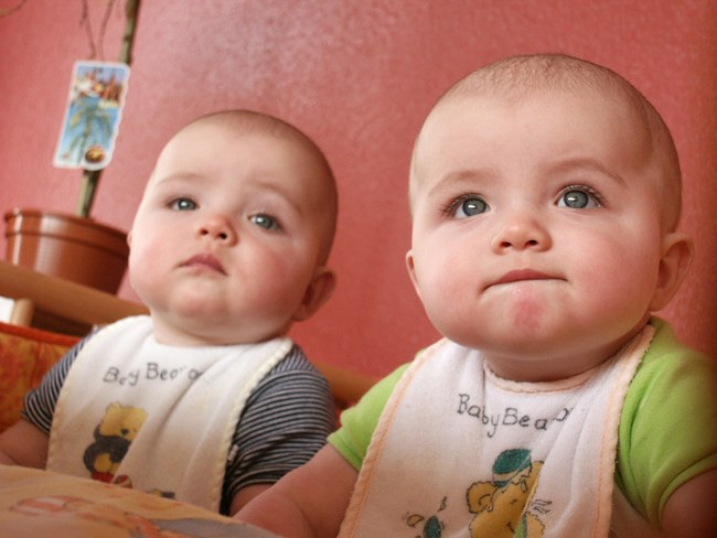 Как воспитывать двойню