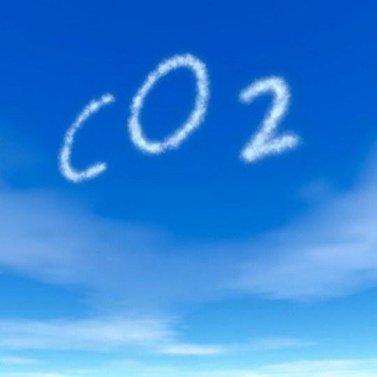 Куда уносит кровь углекислый газ