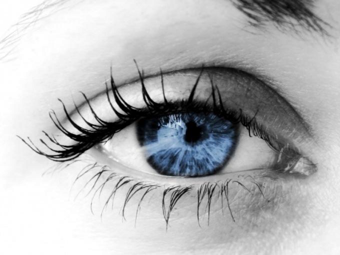 Как восстановить зрение за неделю
