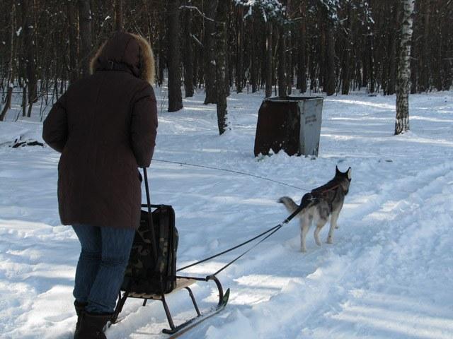 Как сделать санки из лыж
