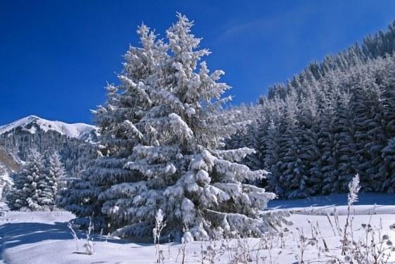 Как меняется зимний день