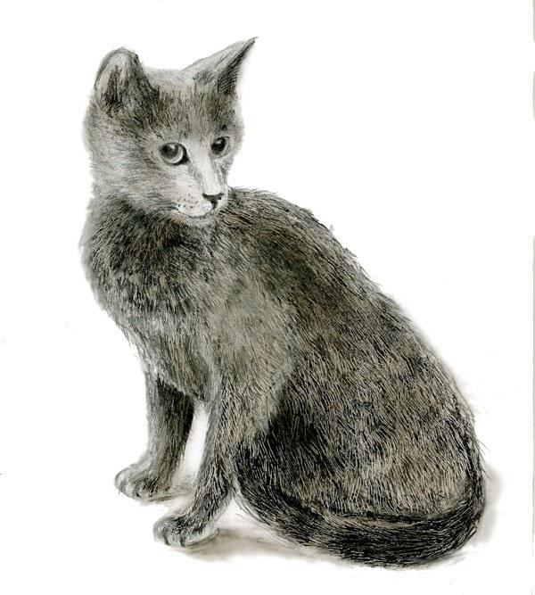 Как нарисовать сидящую <strong>кошку</strong>