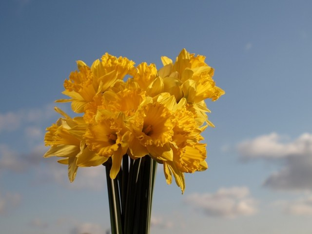 Как обновить стиль весной