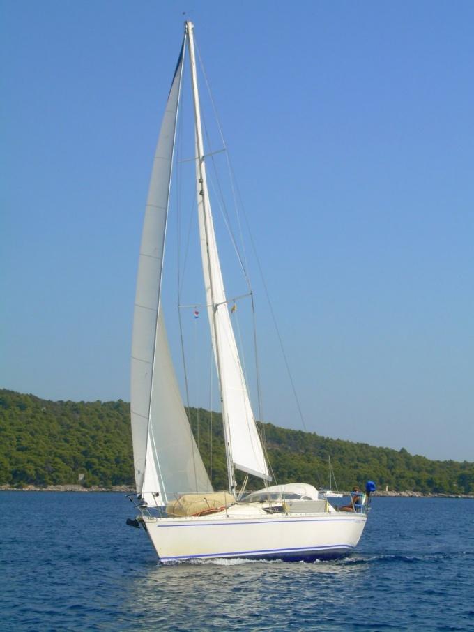 Как получить права на яхту