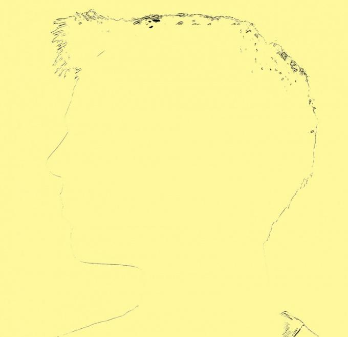 Определите соотношения частей лица