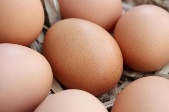 Съедайте каждый день не менее 6-7 яиц