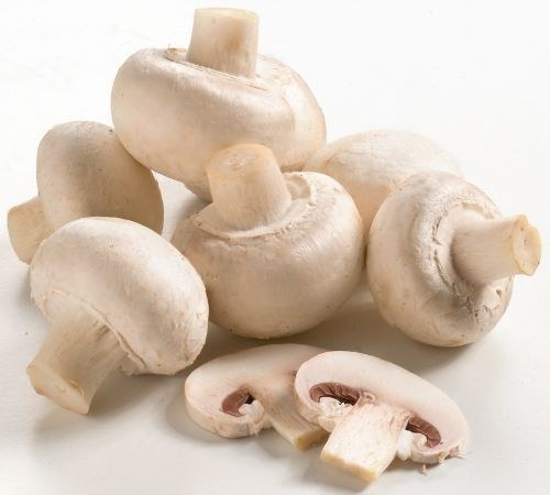 How to boil fresh mushrooms