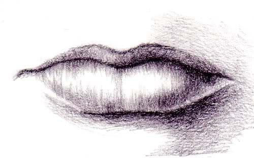 Как нарисовать губки