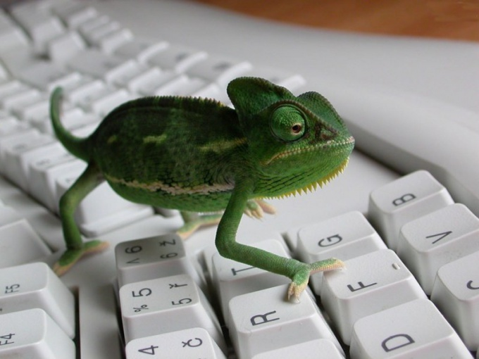 """How to disable """"Chameleon"""" in MTS"""