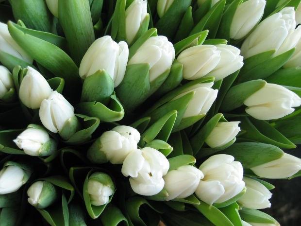 Как нужно дарить девушке цветы