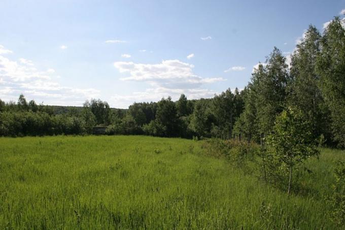 Как оформить землю в деревне