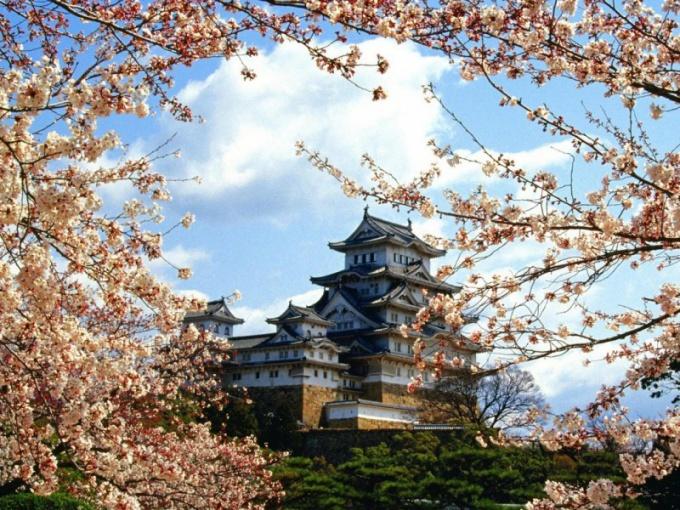 Как оформить визу в Японию