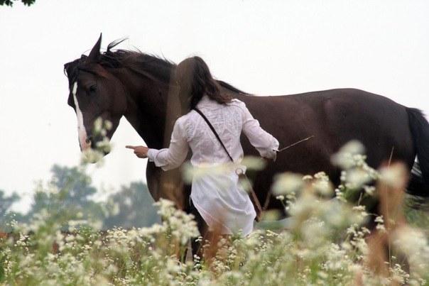 обращение с лошадью