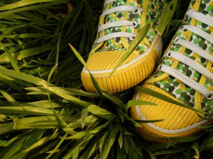Как быть вегетарианцу с обувью