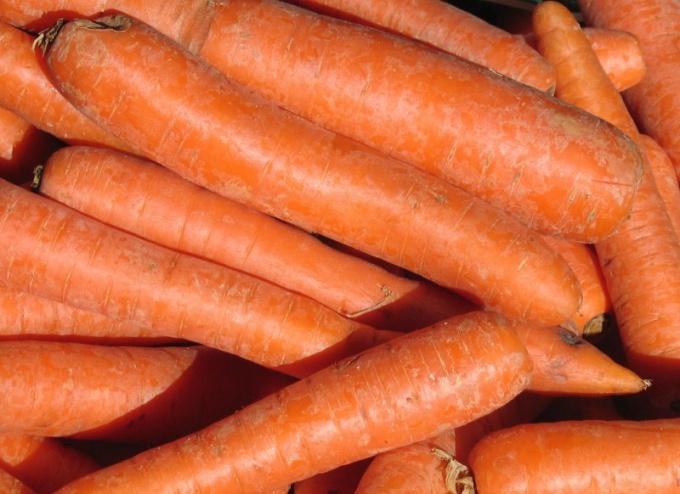 Добавьте в рацион щенка морковь