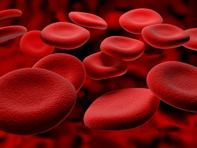 How to quickly restore blood