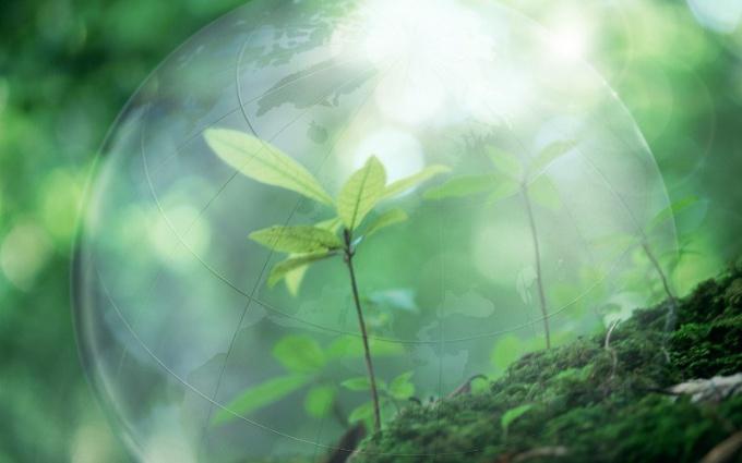 Как улучшить окружающую среду