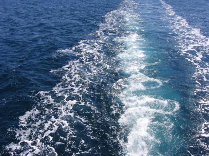 Где отметить День Балтийского флота