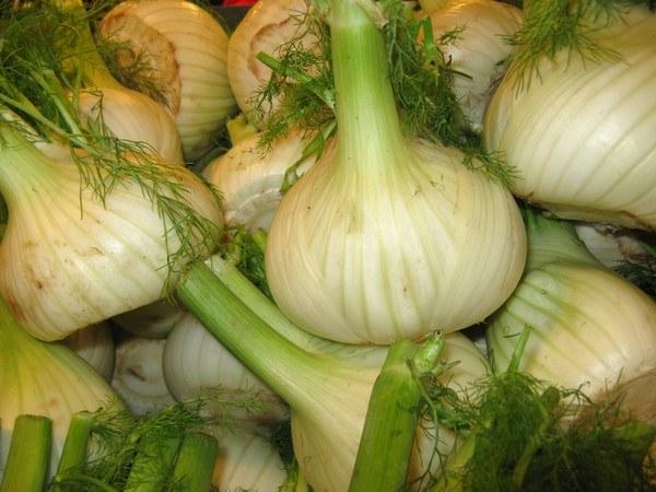Как готовить салат с фенхелем