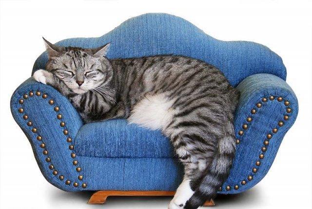 как сделать крышу в домике для кошки