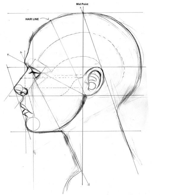 Как нарисовать шею
