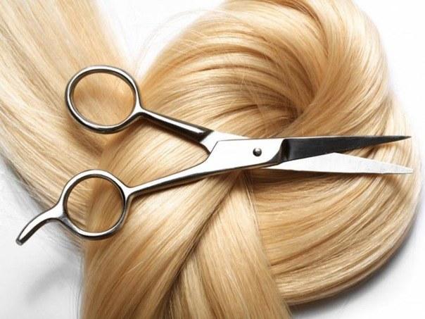 Какие бывают стрижки для тонких волос