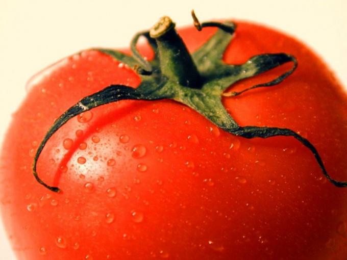 Как приготовить запеканку из помидоров