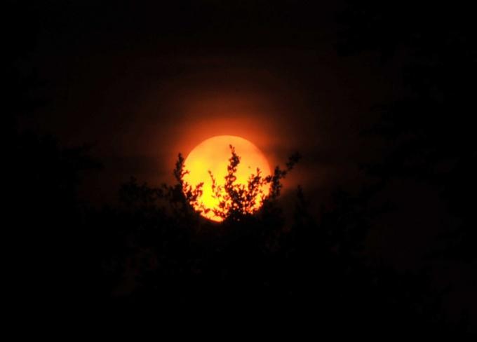 Что такое прохождение Венеры по солнечному диску