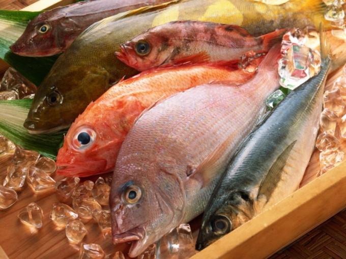 Как приготовить рыбный суп с вином