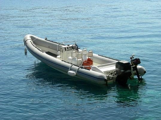 Как предпочесть лодочный мотор