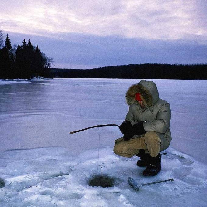 Как ловить сорогу зимой
