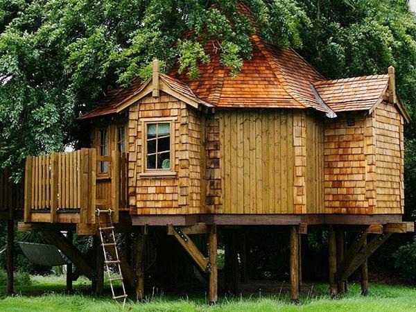 Где в мире есть дома на деревьях