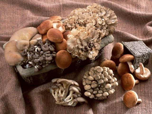 Как сделать рулет с грибами