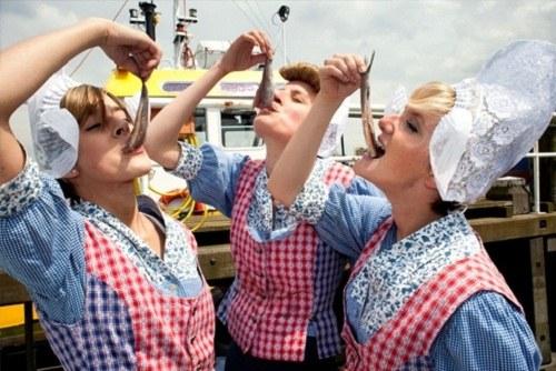 Как попасть на праздник селедки в Нидерландах