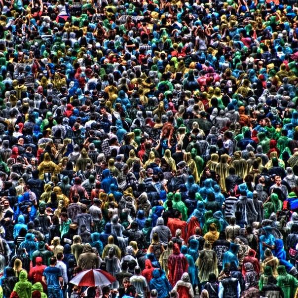 Что такое социальная общность